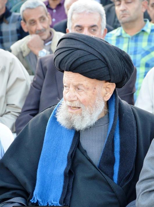 السيد أحمد شوقي